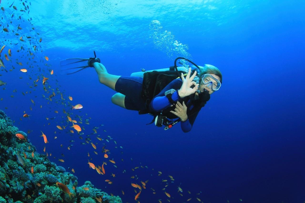 潜水基本设备知多少