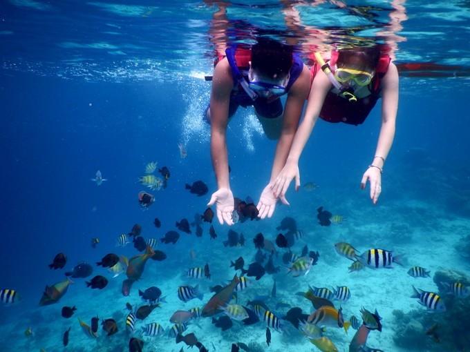潜水考证好去处!马来西亚仙本那婆罗度假村!拥有超多诗巴丹名额!
