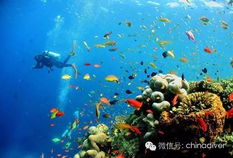 马达京 | 带你看遍马达京岛的颜色!