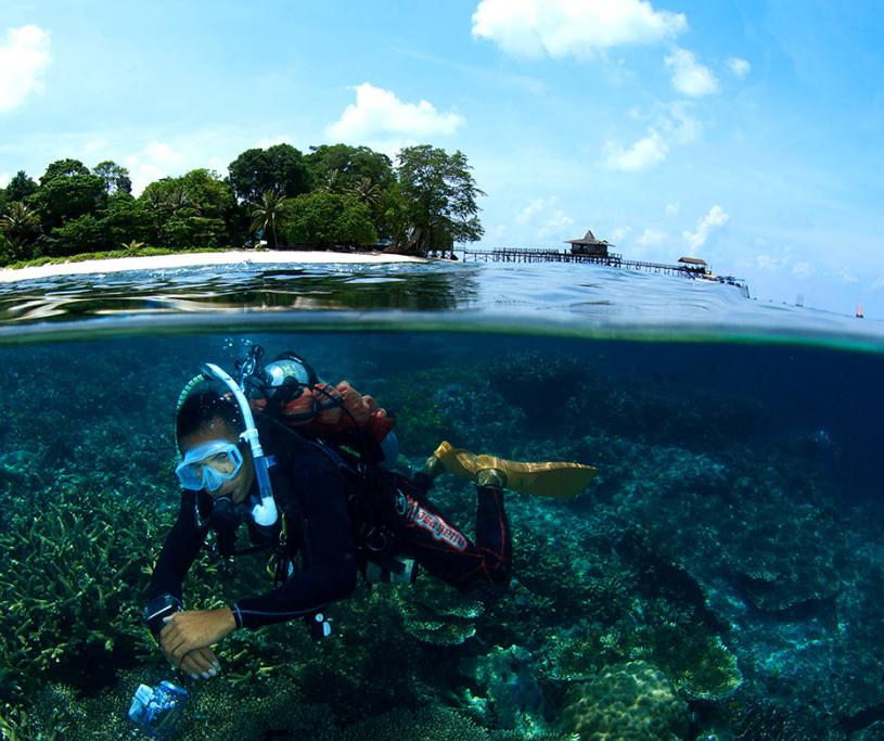 高性价比的潜水之旅——婆罗洲潜水马布度假村,快来拥抱璀璨的海洋世界吧!
