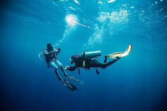 潜水保险攻略|如何在选出最适合自己的潜水保险?秒懂……