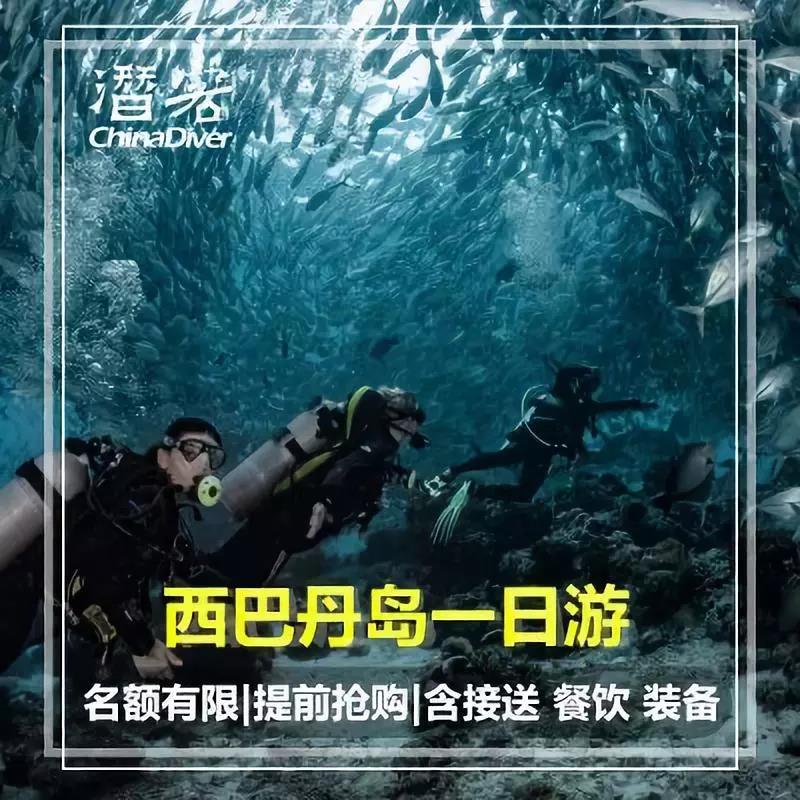 诗巴潜水攻略|埋葬着潜水的灵魂!潜水员不得不来的潜水圣地!
