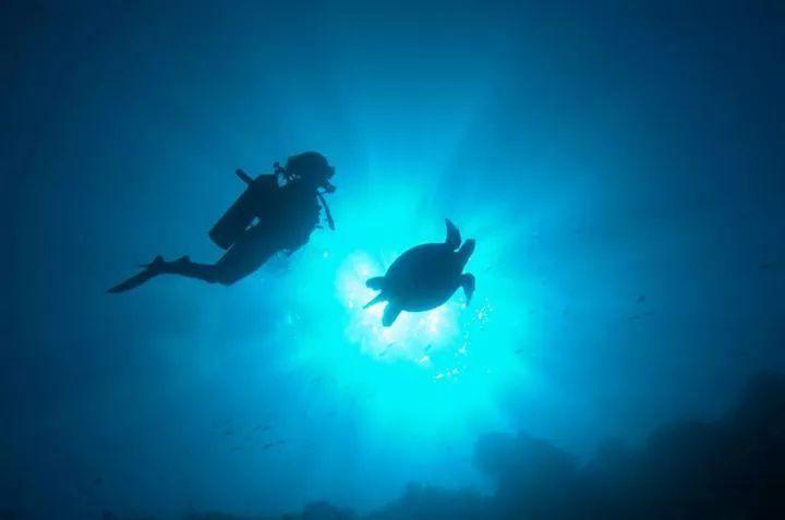 涛岛⭐世界潜水员工厂,我在这里学潜水