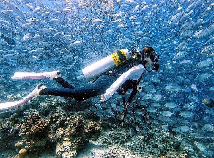 潜水小白必看|学潜水到底需不需要会游泳?